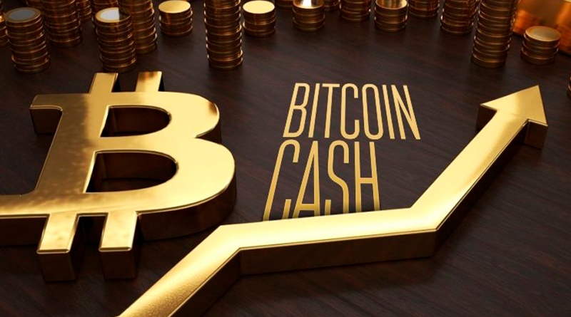Mike Herne  shared his thoughts on Bitcoin Cash