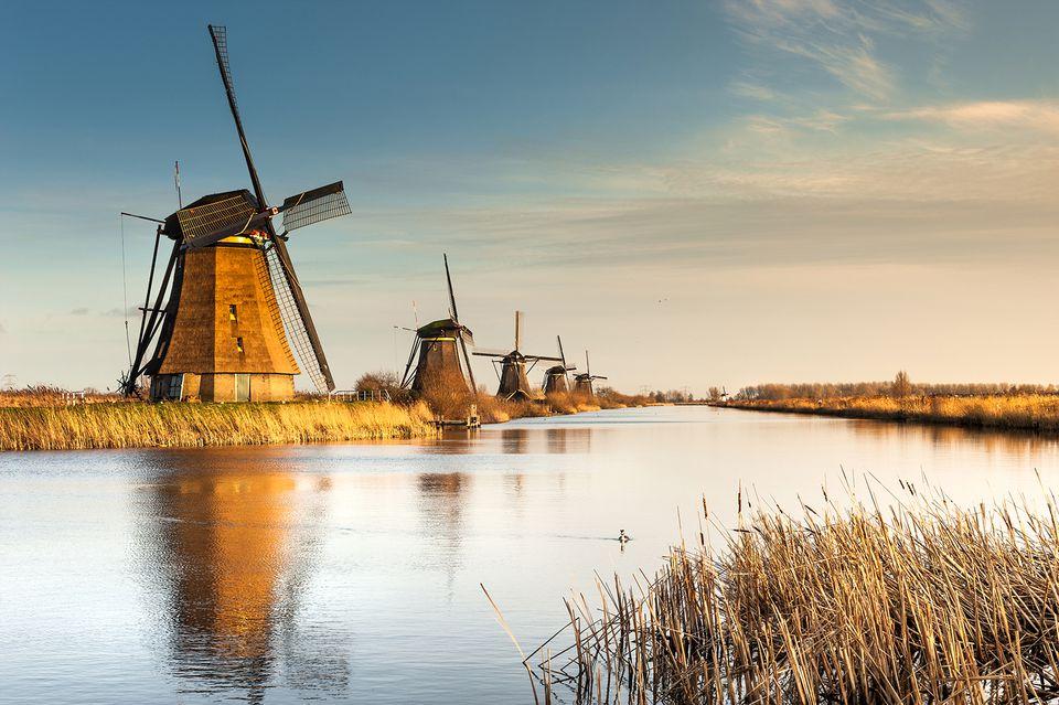 Dutch authorities criticized blockchain technology